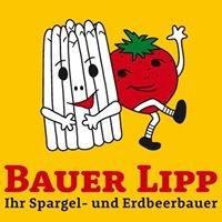 Bauer Lipp