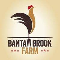 Bantam Brook Farm