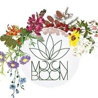 Moon Bloom