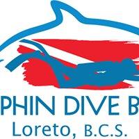 Dolphin Dive Baja