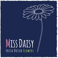 Miss Daisy Fresh Dutch Flowers, bouquet subscriptions and workshops