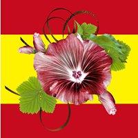 Malvahermosa знакомит с Испанией
