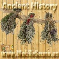 Ancient History & Sauna Accessories