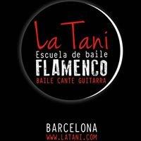 Escuela de baile flamenco La Tani
