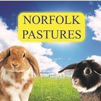 Norfolk Pastures