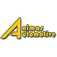 Animas Automotive