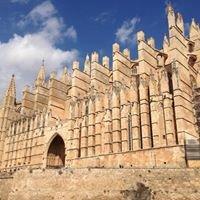 Catedral De Palma (La Seu)