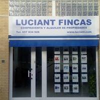 Luciant Fincas