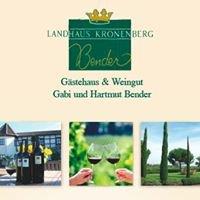 Landhaus Kronenberg, Kallstadt