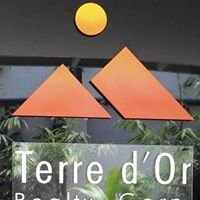 Terre d' Or Realty Corporation