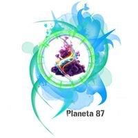 Planeta 87 Radio