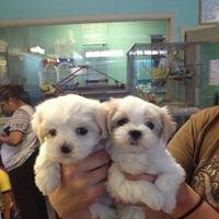 Partners Pet Center