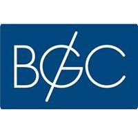 Българска геоинформационна компания
