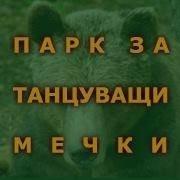Парк за танцуващи мечки/Dancing Bears Park
