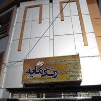 موسسه فرهنگی هنری رنگمایه