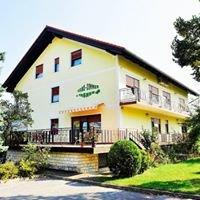 Prenočišča Tašner - Guest house Stara lipa Tašner Maribor