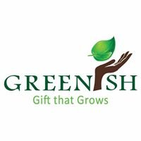 Greenish - Gift that Grows