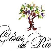 Bodegas César del Río