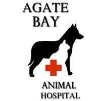 Agate Bay Animal Hospital & Dog Gone Crazy