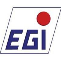 E. Ganzon Inc.