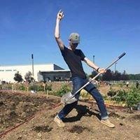 ASI Tree Planting
