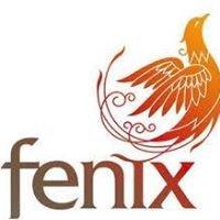 Fenix Com. Automotivos