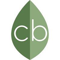 Creative Branch Marketing