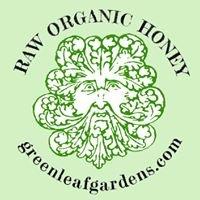 Greenleaf Gardens Honey