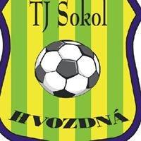 TJ Sokol Hvozdná