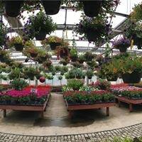 Horton's Nursery & Garden Center