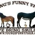 Young's Funny Farm, Inc