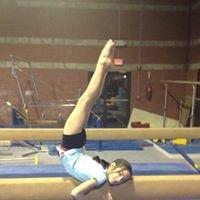 Absolute Gymnastics Academy