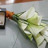 Vjenčanja VG - TN'T