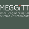 Meggitt Defense Systems