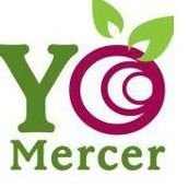 Yo Mercer