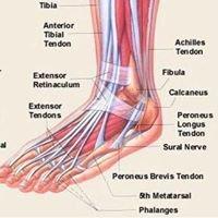 Barefoot Freedom Orthopaedic clinic