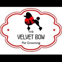 Velvet Bow Pet Grooming