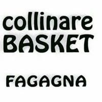 Collinare Basket Fagagna