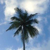 Sunbay Hotel - Barbados