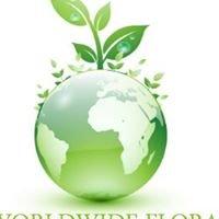 Worldwide Floral Distributors