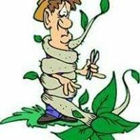Badcock Gardening Services