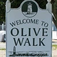 Olive Beach