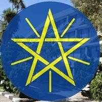 Ethiopian Business and Economic Diplomacy