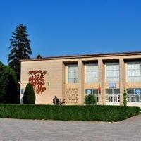 Casa de Cultură Făgăraş