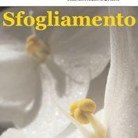 Sfogliamento Magazine
