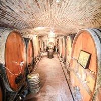 Hubert Metz, vigneron - Cave de la Dîme
