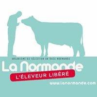 La Normande - L'éleveur libéré