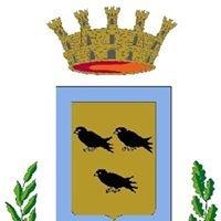 Città Ufficio Stampa Nichelino