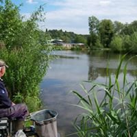 Wilden Pool Fishery