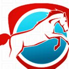 Hunter & New England Equine Dental Service